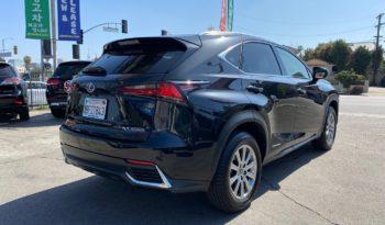 2019 Lexus NX300h Sport Utility full
